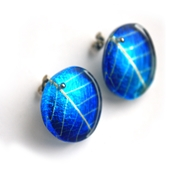 Royal Blue Skeleton Leaf Stud Earrings