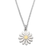 aster pendant