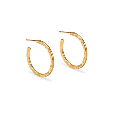 Small Gold Plated Hoops